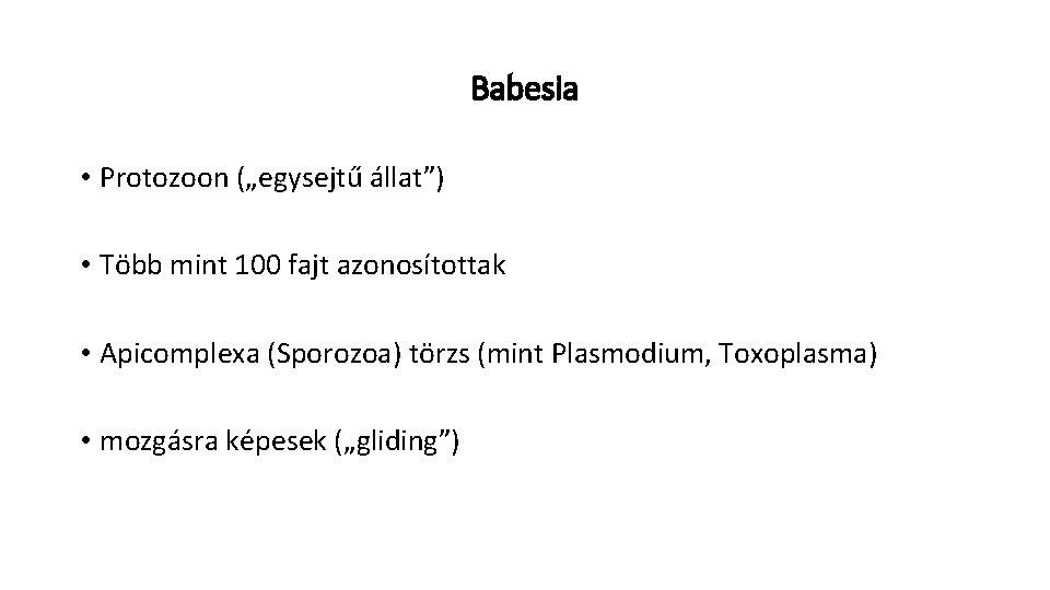 sporozoa parazita
