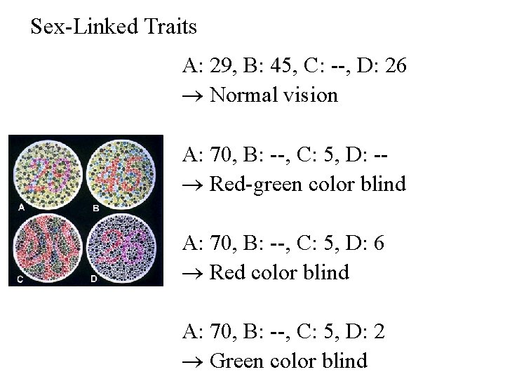 Sex-Linked Traits A: 29, B: 45, C: --, D: 26 Normal vision A: 70,