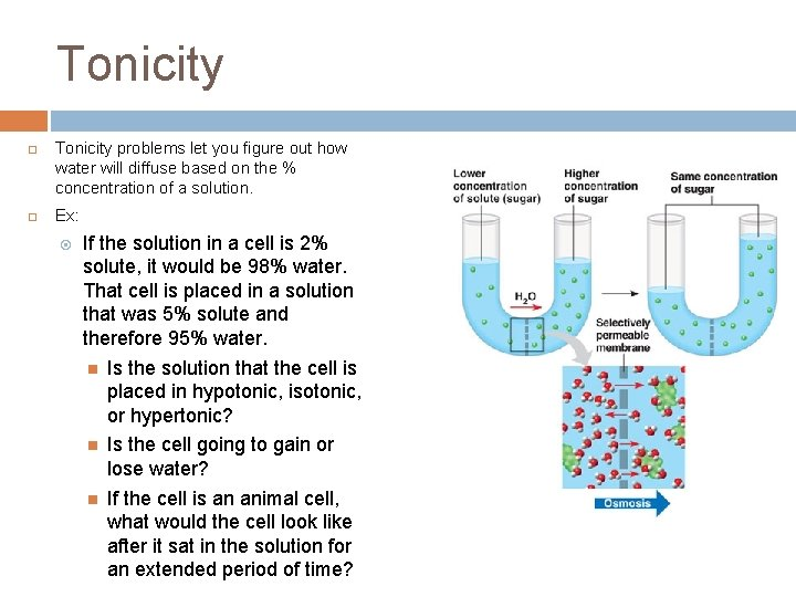 Tonicity ¨ ¨ Tonicity problems let you figure out how water will diffuse based