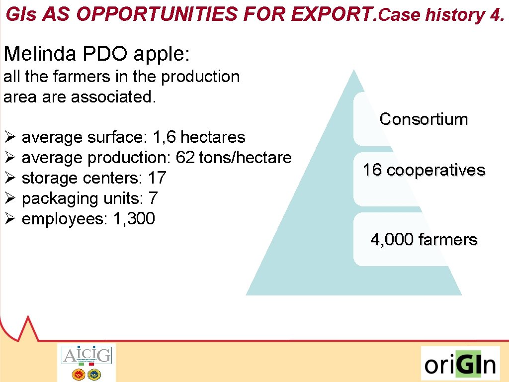 GIs AS OPPORTUNITIES FOR EXPORT. Case history 4. Melinda PDO apple: all the farmers