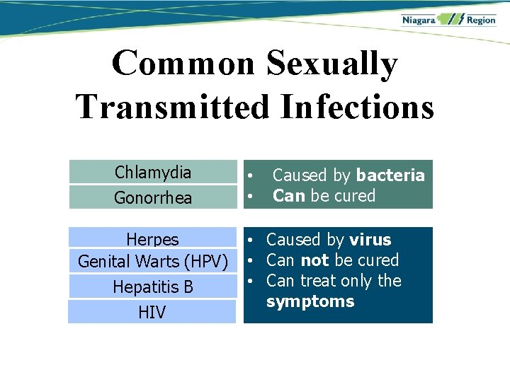 Hpv herpes hiv, Hpv herpes simplex 1