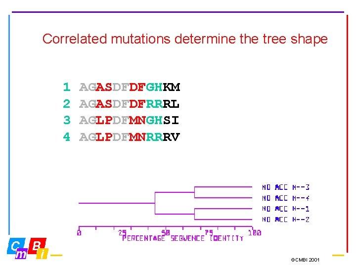 Correlated mutations determine the tree shape 1 2 3 4 AGASDFDFGHKM AGASDFDFRRRL AGLPDFMNGHSI AGLPDFMNRRRV