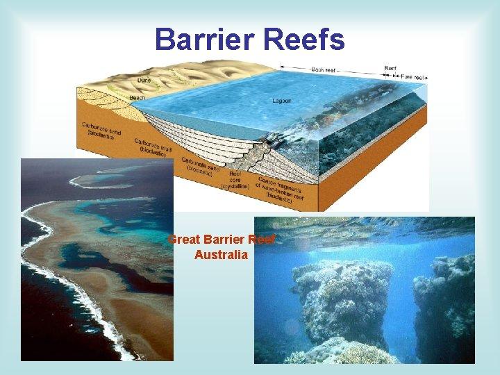 Barrier Reefs Great Barrier Reef Australia