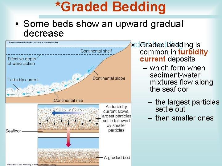*Graded Bedding • Some beds show an upward gradual decrease – in grain size,
