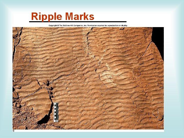 Ripple Marks __________