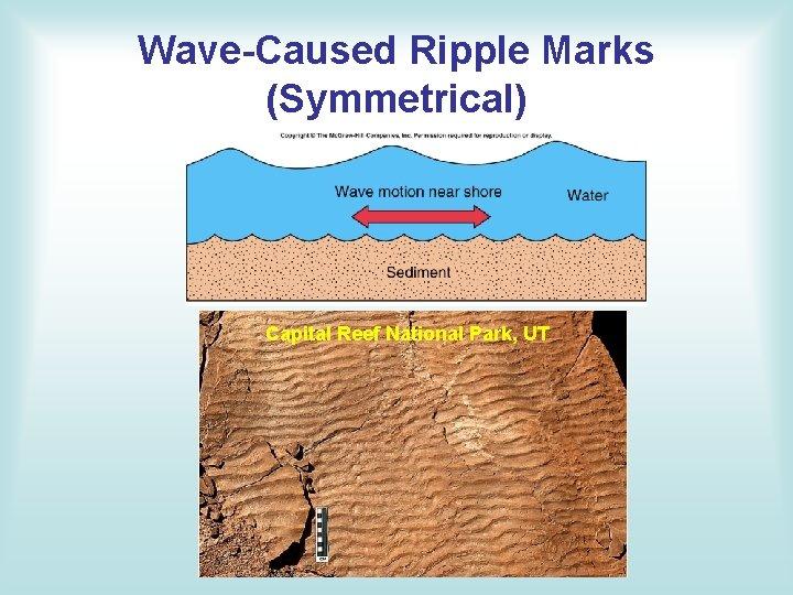 Wave-Caused Ripple Marks (Symmetrical) Capital Reef National Park, UT