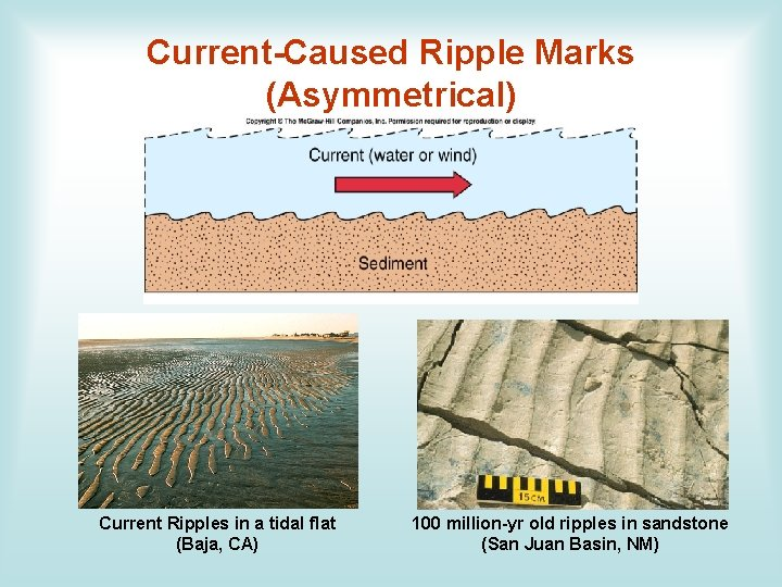 Current-Caused Ripple Marks (Asymmetrical) Current Ripples in a tidal flat (Baja, CA) 100 million-yr