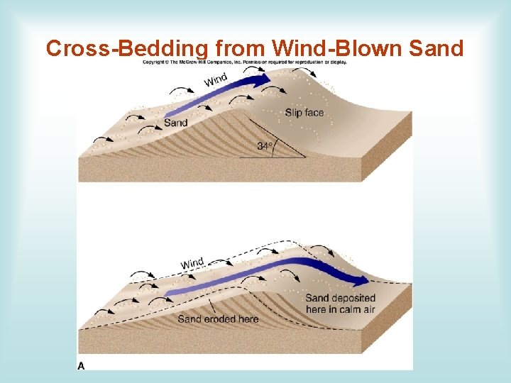 Cross-Bedding from Wind-Blown Sand