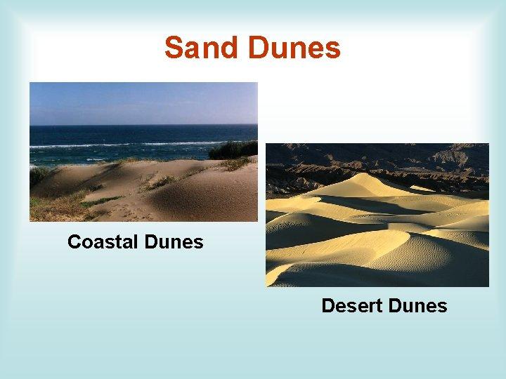 Sand Dunes Coastal Dunes Desert Dunes