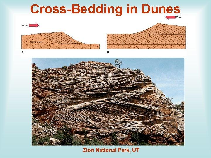 Cross-Bedding in Dunes Zion National Park, UT