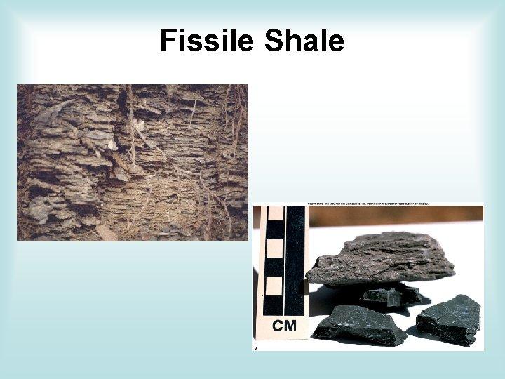 Fissile Shale