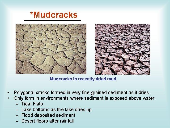 *Mudcracks ______ Mudcracks in recently dried mud • Polygonal cracks formed in very fine-grained