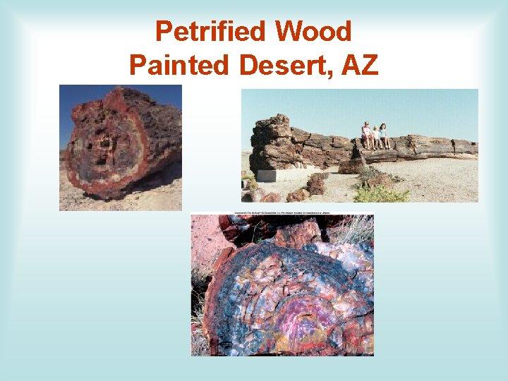Petrified Wood Painted Desert, AZ
