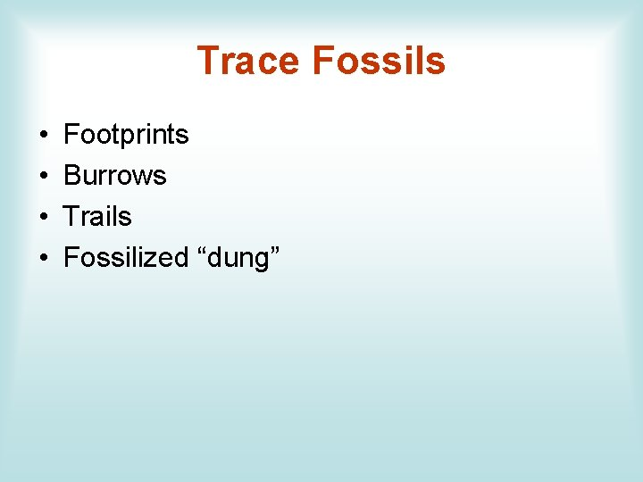 """Trace Fossils • • Footprints Burrows Trails Fossilized """"dung"""""""