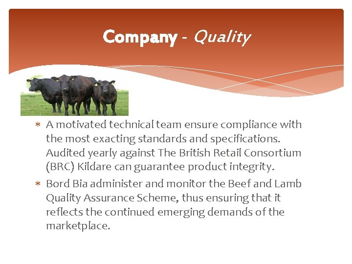 Company - Quality A motivated technical team ensure compliance with the most exacting standards