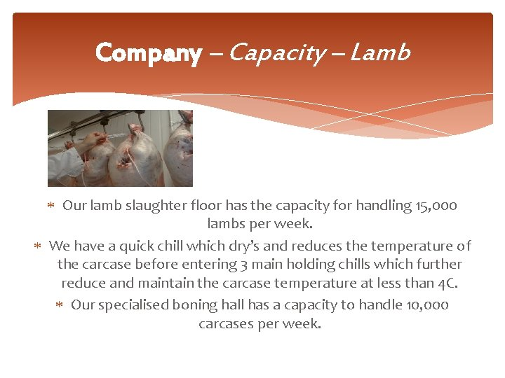 Company – Capacity – Lamb Our lamb slaughter floor has the capacity for handling