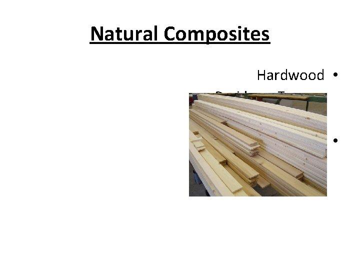 Natural Composites Hardwood • Deciduous Trees – Softwood • Coniferous –
