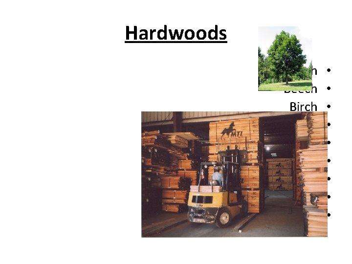 Hardwoods Ash Beech Birch Cherry Mahogany Maple Oak Poplar walnut • • •