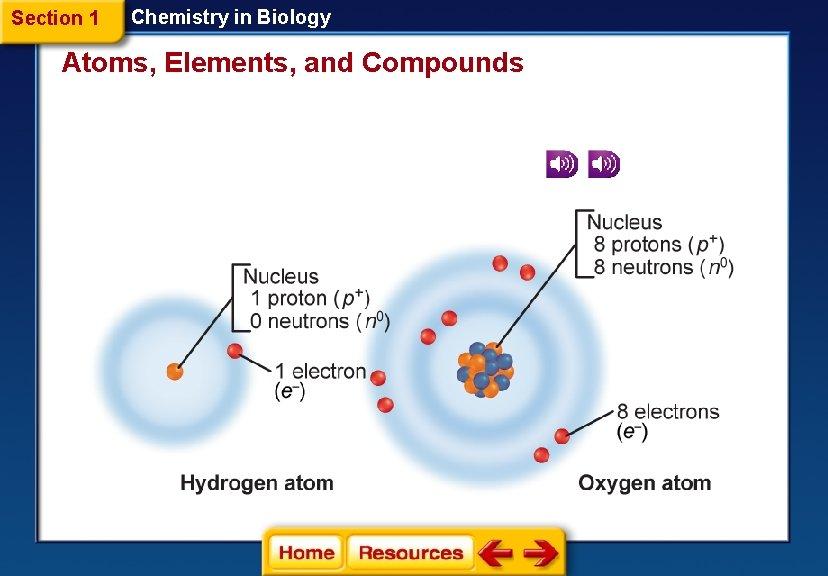 Atoms and elements quizlet