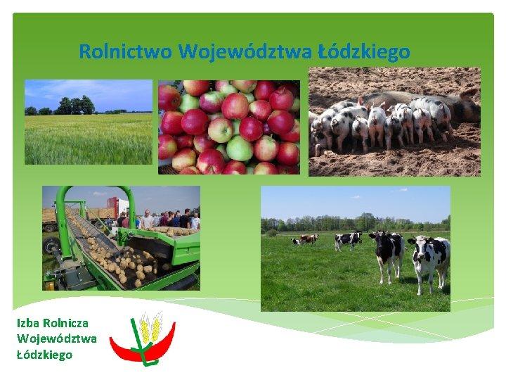 Rolnictwo Województwa Łódzkiego Izba Rolnicza Województwa Łódzkiego