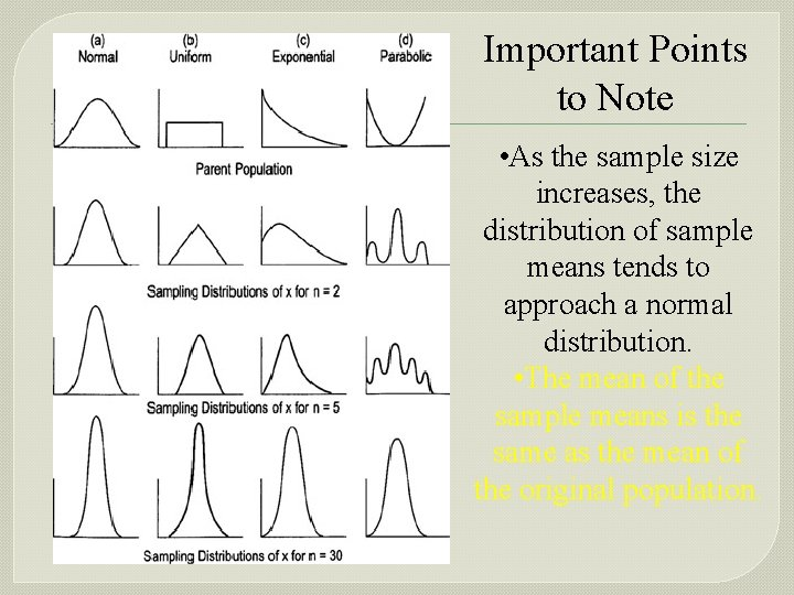Important Points to Note • As the sample size increases, the distribution of sample