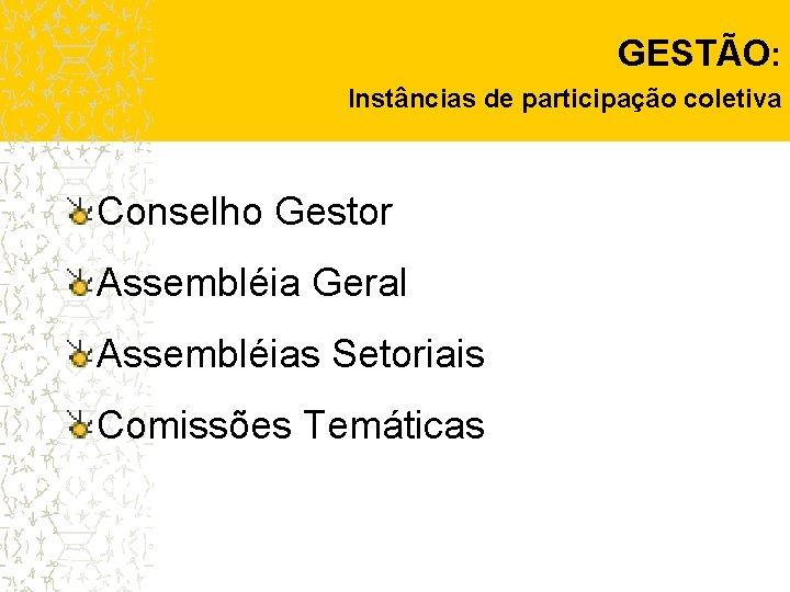 GESTÃO: Instâncias de participação coletiva Conselho Gestor Assembléia Geral Assembléias Setoriais Comissões Temáticas