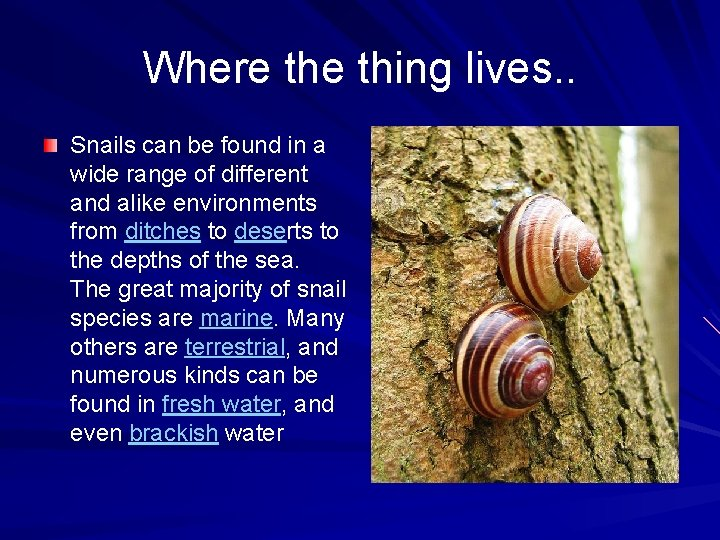 Where thing lives. . Snails can be found in a wide range of different