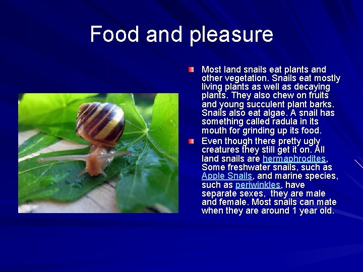 Food and pleasure Most land snails eat plants and other vegetation. Snails eat mostly