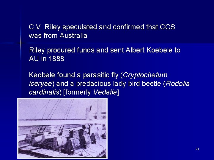 C. V. Riley speculated and confirmed that CCS was from Australia Riley procured funds