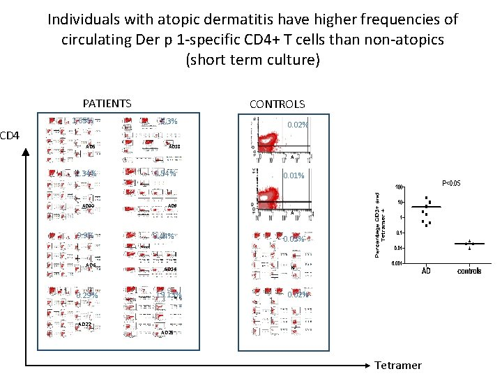 Individuals with atopic dermatitis have higher frequencies of circulating Der p 1 -specific CD