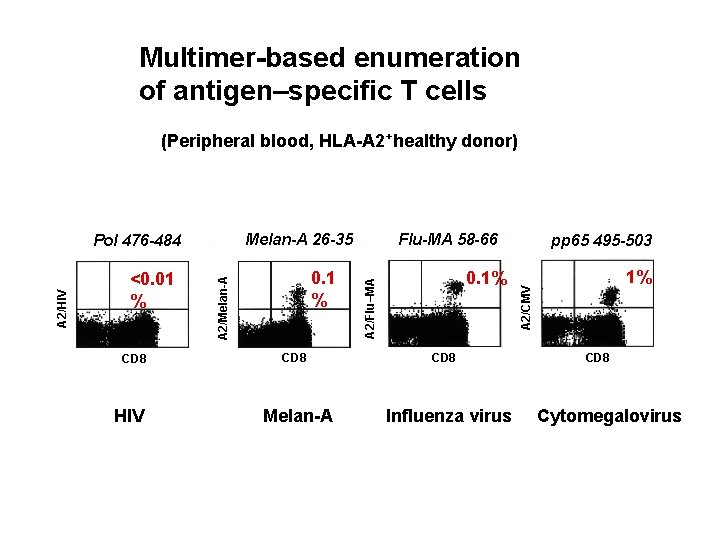 Multimer-based enumeration of antigen–specific T cells (Peripheral blood, HLA-A 2+healthy donor) CD 8 HIV