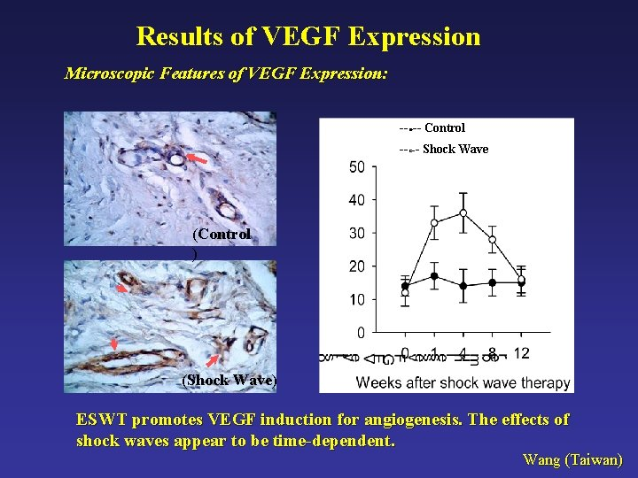 Results of VEGF Expression Microscopic Features of VEGF Expression: --●-- Control --○-- Shock Wave