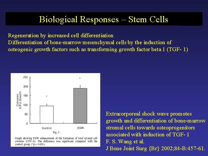 Biological Responses – Stem Cells Regeneration by increased cell differentiation Differentiation of bone-marrow mesenchymal