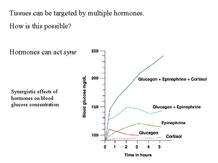 Tissues can be targeted by multiple hormones. How is this possible? Hormones can act