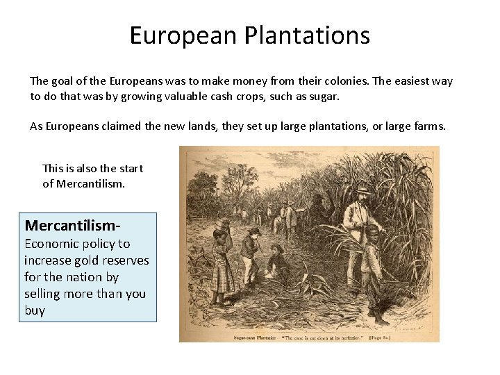 European Plantations The goal of the Europeans was to make money from their colonies.