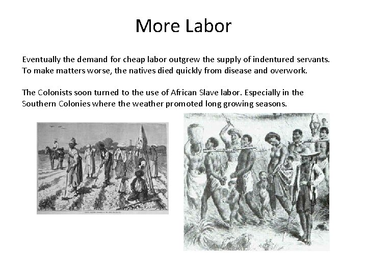 More Labor Eventually the demand for cheap labor outgrew the supply of indentured servants.