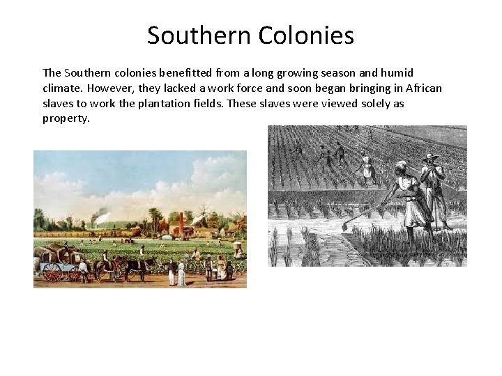Southern Colonies The Southern colonies benefitted from a long growing season and humid climate.