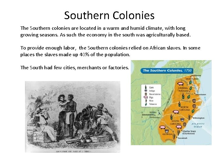 Southern Colonies The Southern colonies are located in a warm and humid climate, with