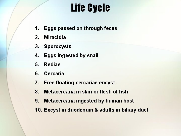 Life Cycle 1. Eggs passed on through feces 2. Miracidia 3. Sporocysts 4. Eggs