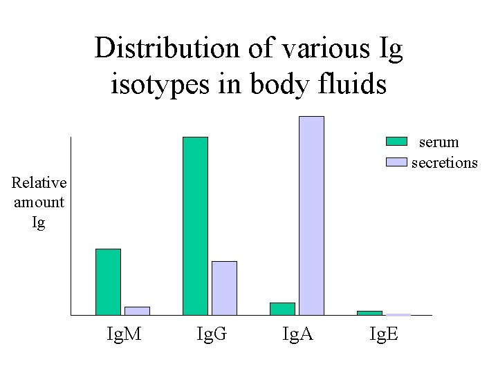 Distribution of various Ig isotypes in body fluids serum secretions Relative amount Ig Ig.