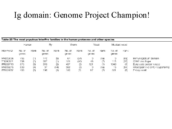 Ig domain: Genome Project Champion!