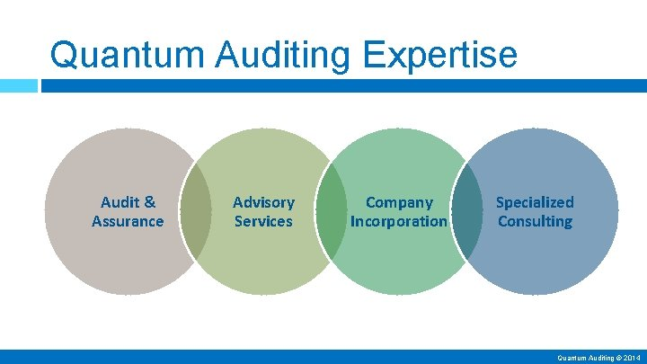 Quantum Auditing Expertise Audit & Assurance Advisory Services Company Incorporation Specialized Consulting Quantum Auditing