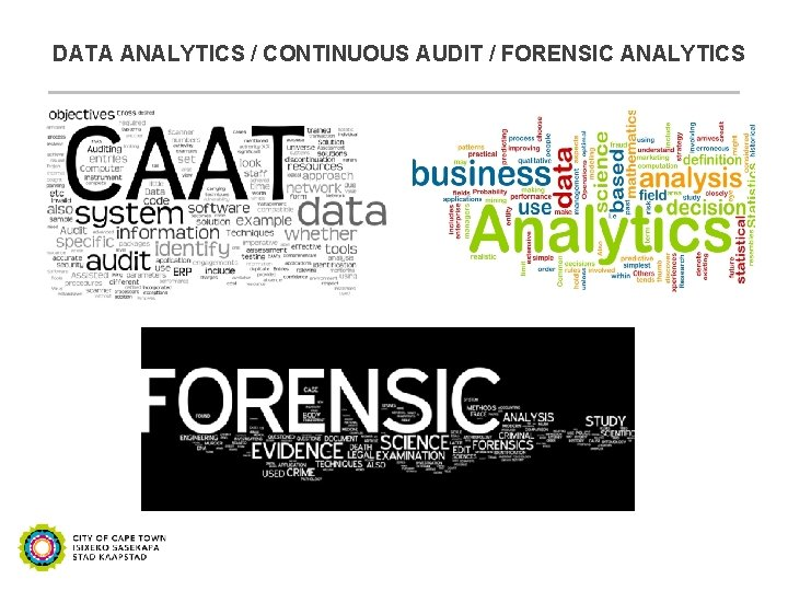 DATA ANALYTICS / CONTINUOUS AUDIT / FORENSIC ANALYTICS