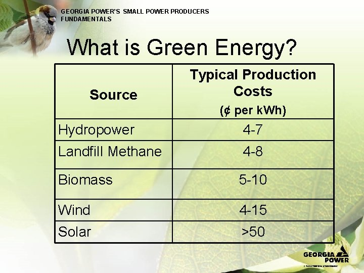 GEORGIA POWER'S SMALL POWER PRODUCERS FUNDAMENTALS What is Green Energy? Source Typical Production Costs