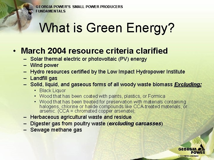 GEORGIA POWER'S SMALL POWER PRODUCERS FUNDAMENTALS What is Green Energy? • March 2004 resource