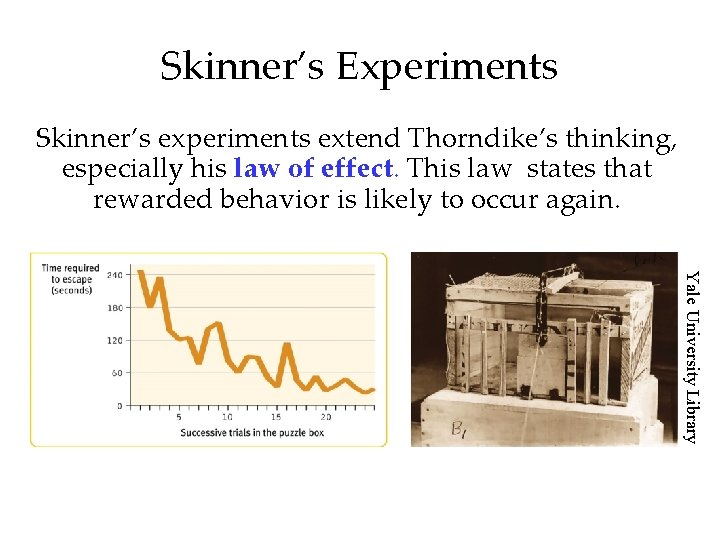 Skinner's Experiments Skinner's experiments extend Thorndike's thinking, especially his law of effect. This law