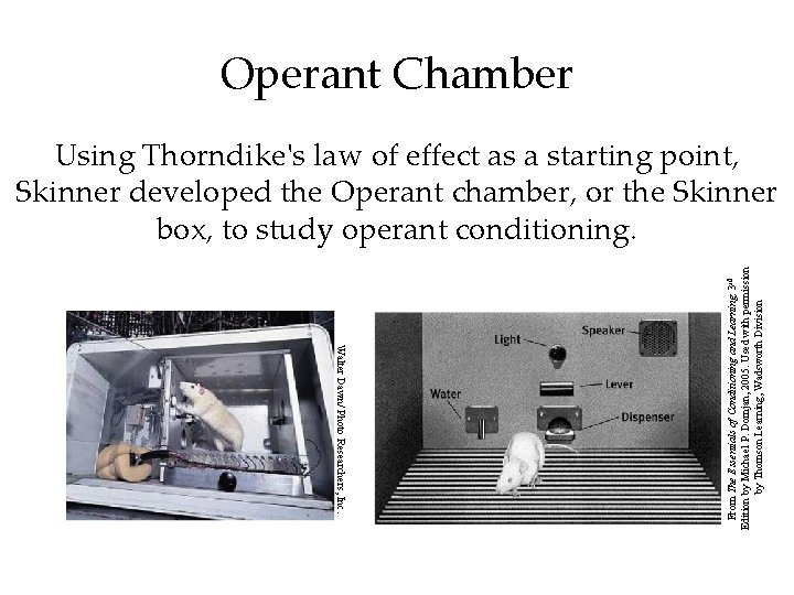 Operant Chamber Walter Dawn/ Photo Researchers, Inc. From The Essentials of Conditioning and Learning,