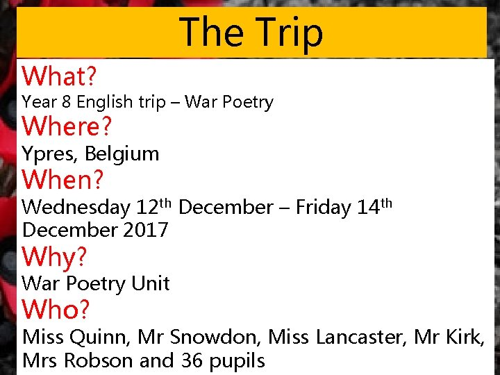 The Trip What? Year 8 English trip – War Poetry Where? Ypres, Belgium When?