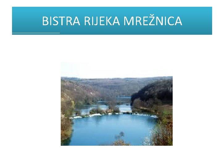 BISTRA RIJEKA MREŽNICA