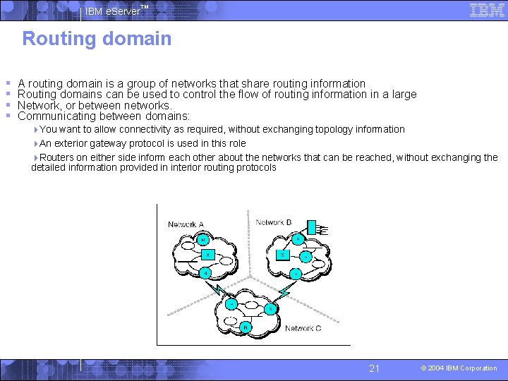IBM e. Server™ Routing domain § § A routing domain is a group of
